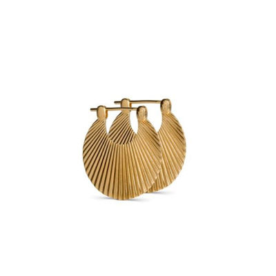 Small shell earring guld